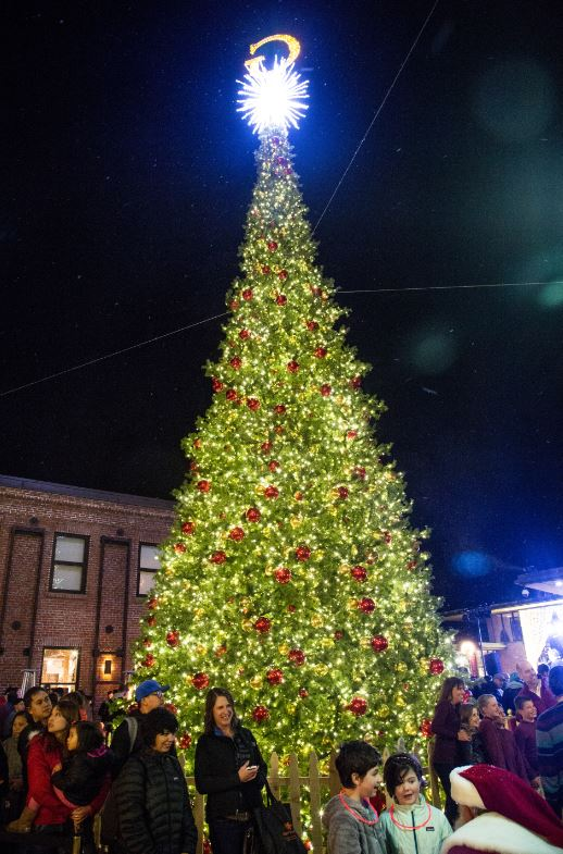 ghirardelli square s annual tree lighting ceremony hoodline