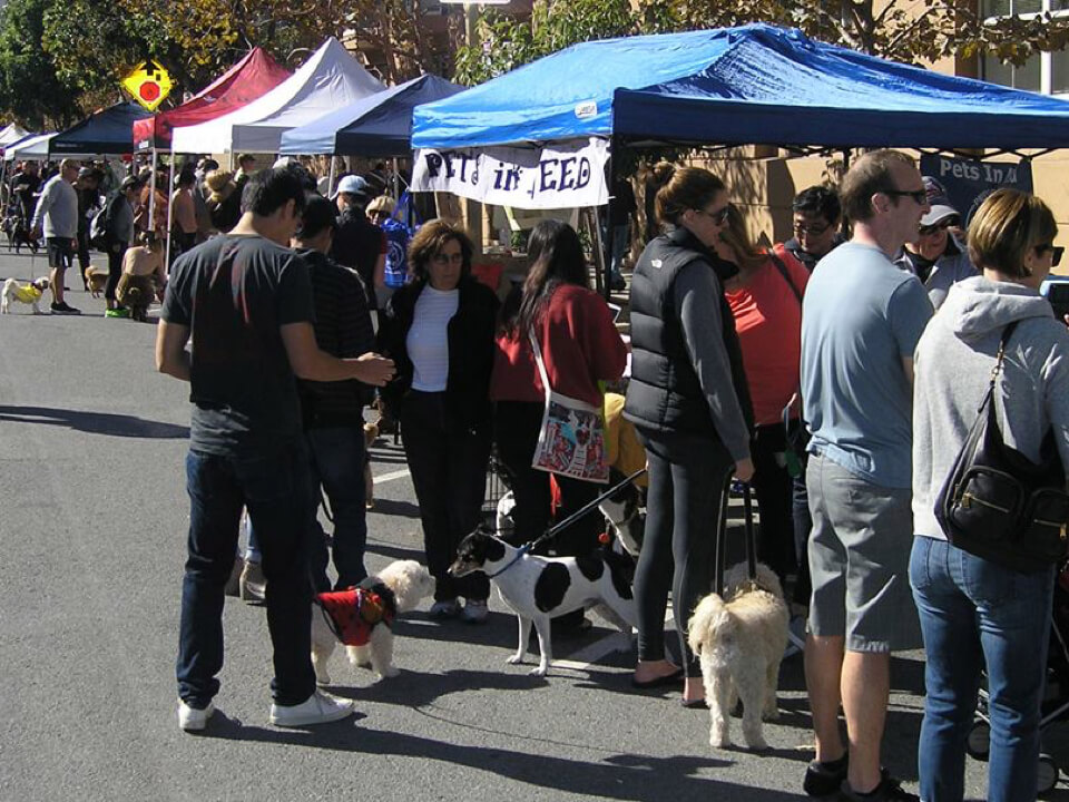 Pawtrero Dog Day