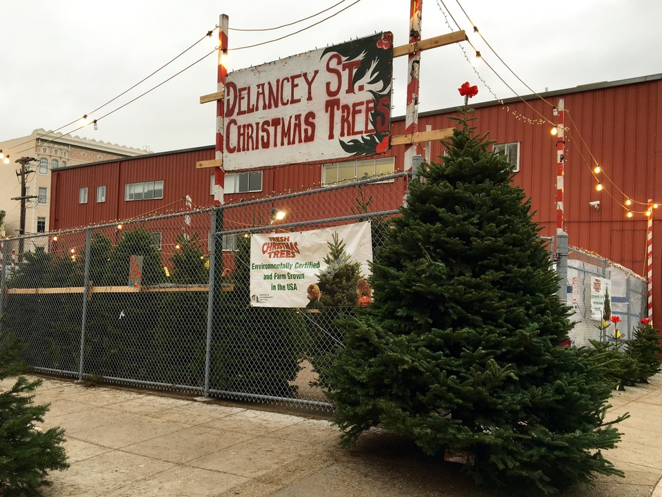 Buy A Christmas Tree, Do Good At Delancey Street's New Octavia Lot - Buy A Christmas Tree, Do Good At Delancey Street's New Octavia Lot