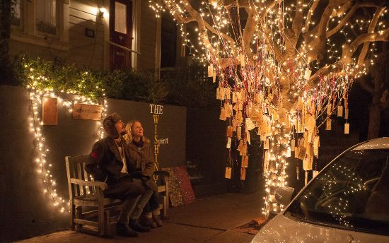 In search of san francisco s best holiday displays 2015 for 45 upper terrace san francisco