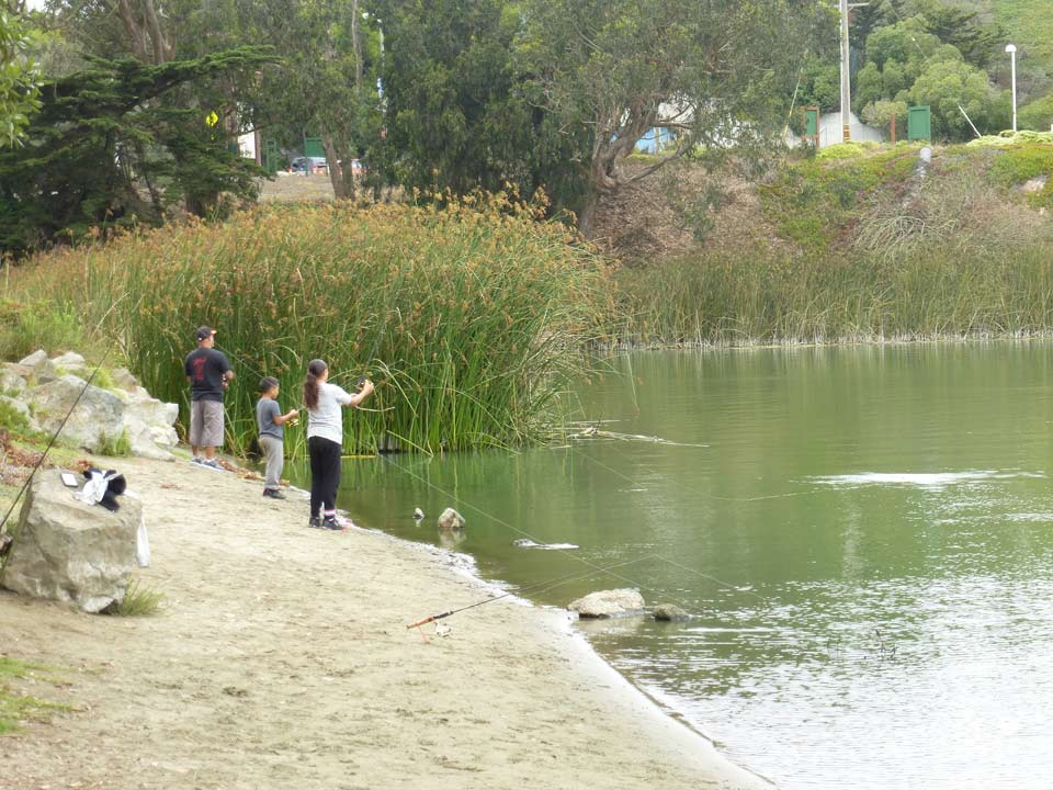 from reservoir to retreat how lake merced has persevered