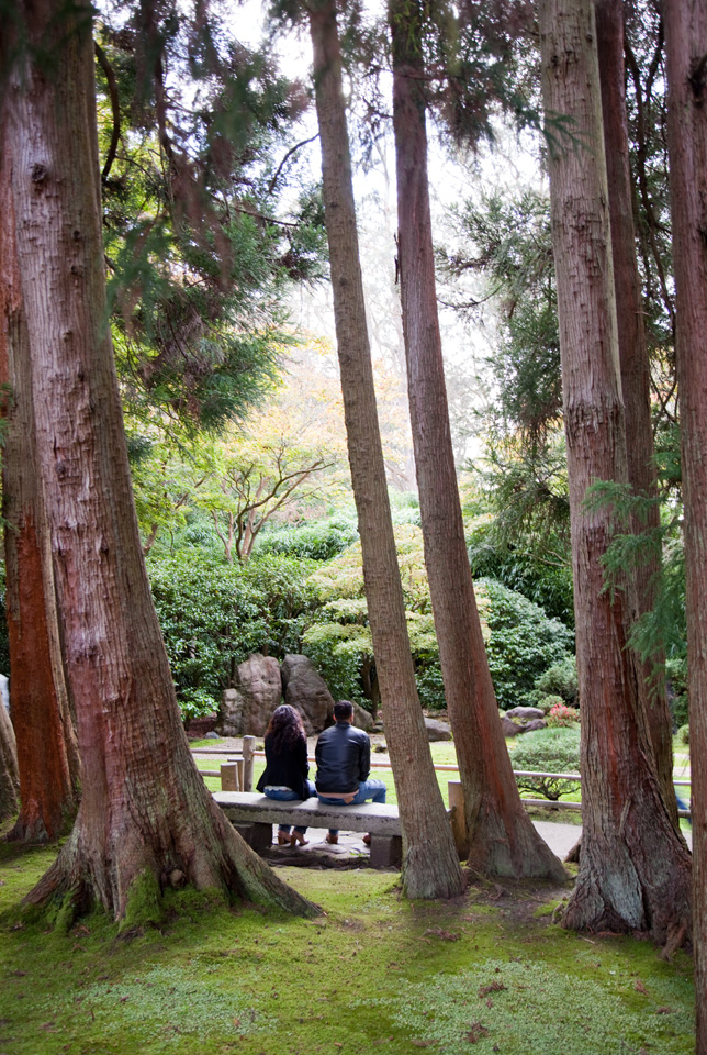 Finding History And Tranquility At The Japanese Tea Garden Hoodline