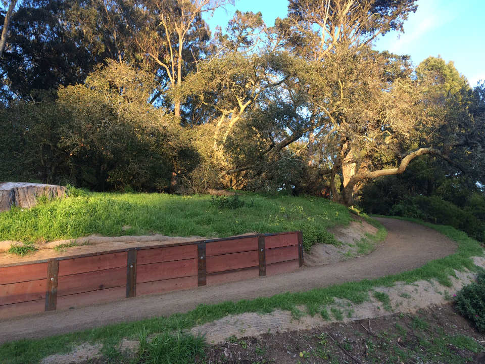 Revamp of Golden Gate Park's Oak Woodlands to debut tomorrow