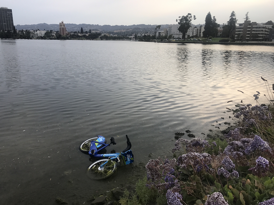 Ford gobike in lake merritt