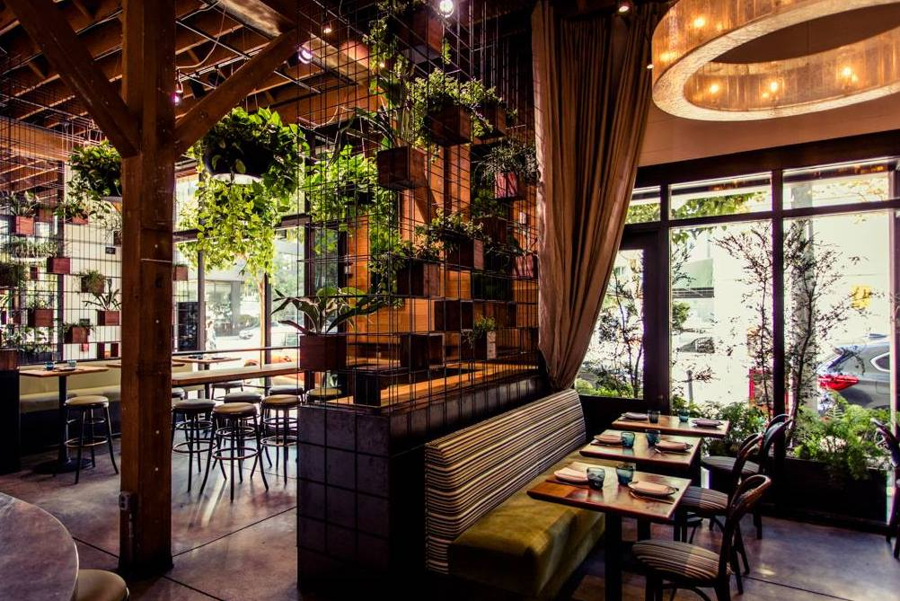 5 Hot New SF Restaurants Where You Can Still Snag A Table This Weekend