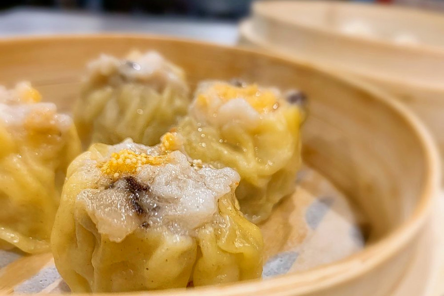 Get dim sum and more at Castro's new Dumpling House