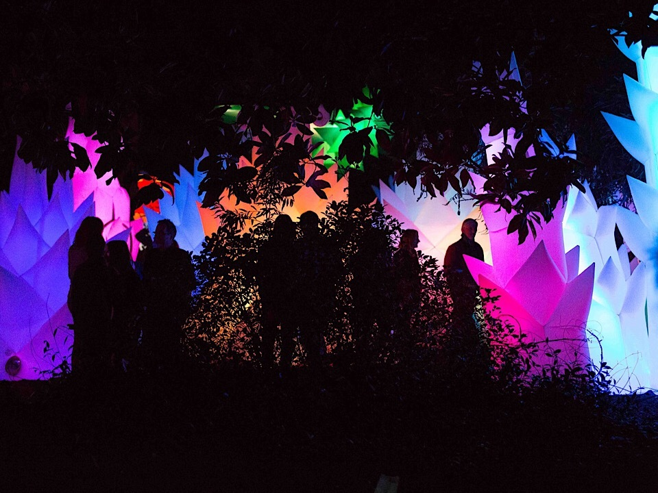 Oakland weekend: Autumn Lights Festival, Comedy Festival, Day of the Dead at OMCA, more