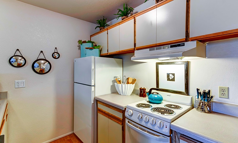 renting in albuquerque what's the cheapest apartment