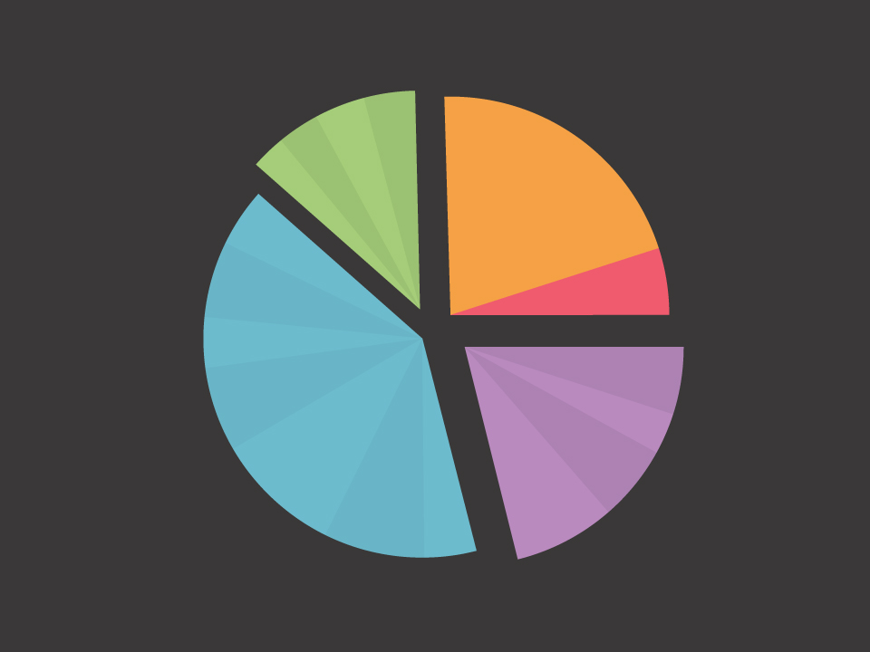 Feature pie chart